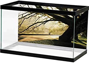 Best aquarium decoration malaysia Reviews