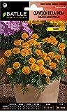Semillas de Flores - Clavelón de la India Mowgli - Batlle