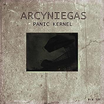Panic Kernel