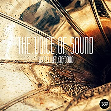 The Voice of Sound