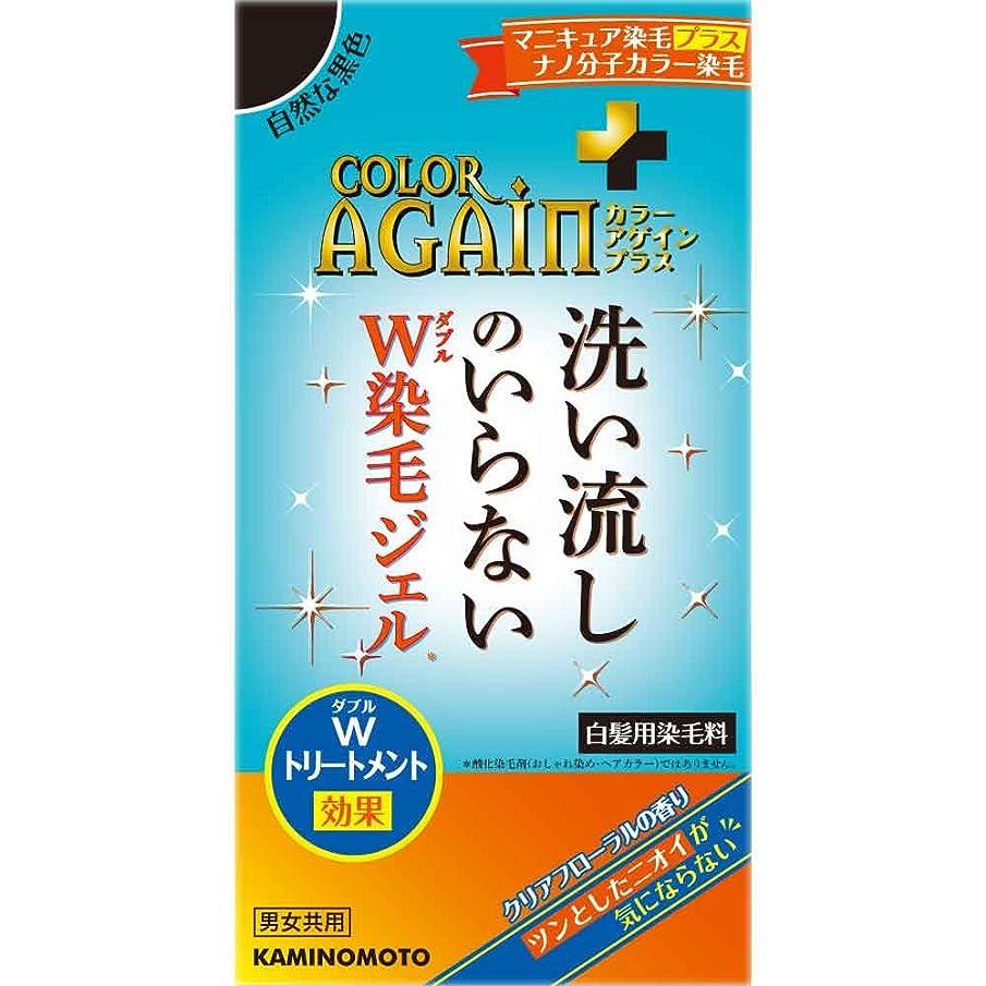 香ばしいワークショップ初心者カラーアゲインプラス 自然な黒色 80mL