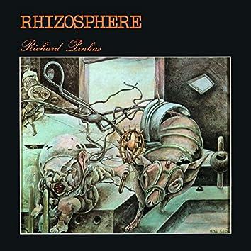 Rhizosphere