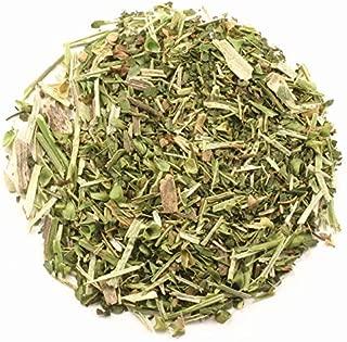 Best skullcap herb bulk Reviews