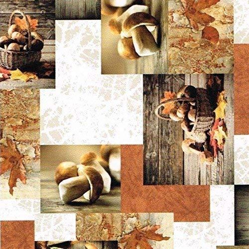 KEVKUS Wachstuch Tischdecke Meterware Herbst Pilze B9062-01 Größe wählbar in eckig rund oval (100 x 140 cm eckig)