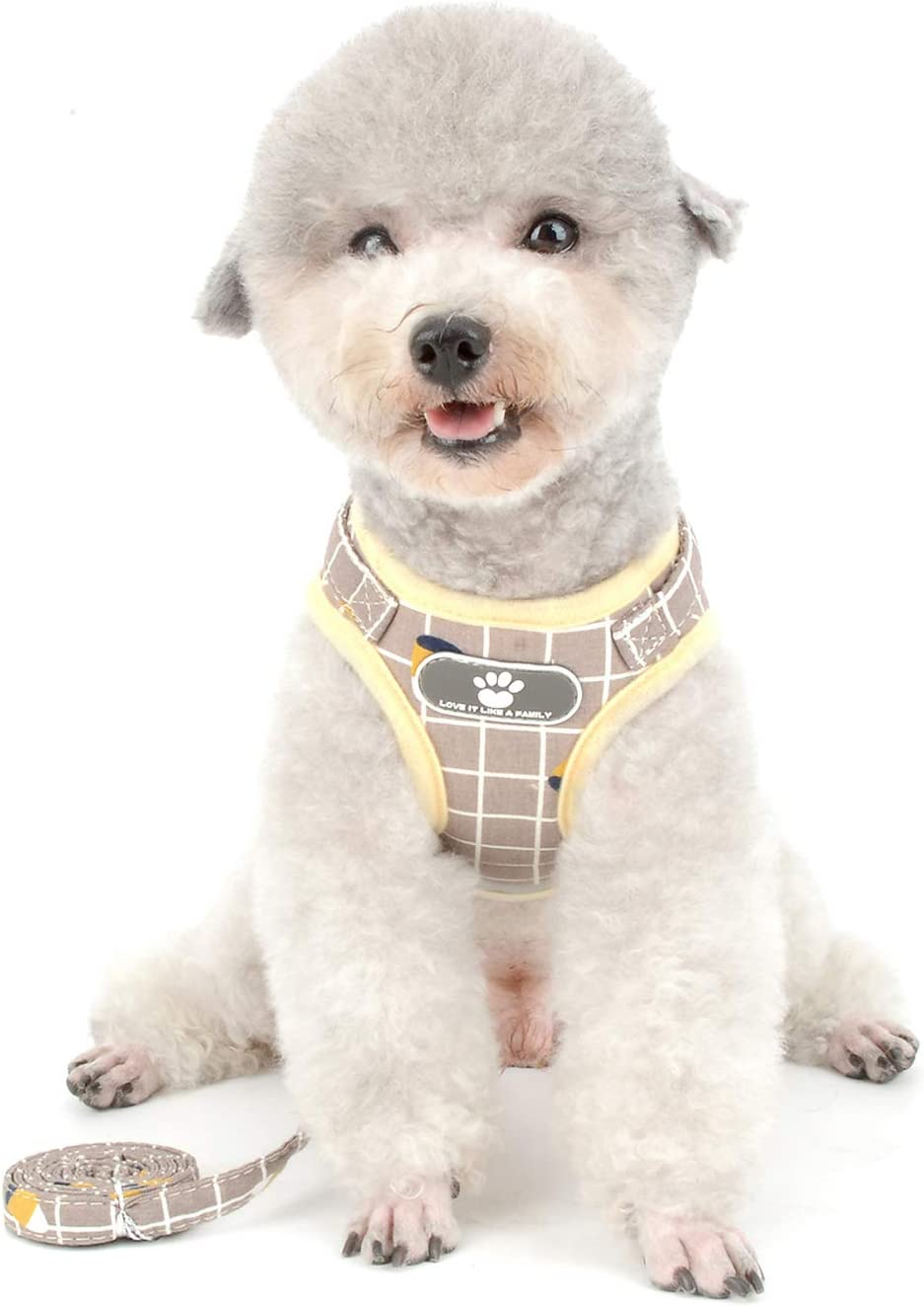 Ranphy Small Dog Harness 25% OFF and Leash Escape Excellent for Cat Walking Proof