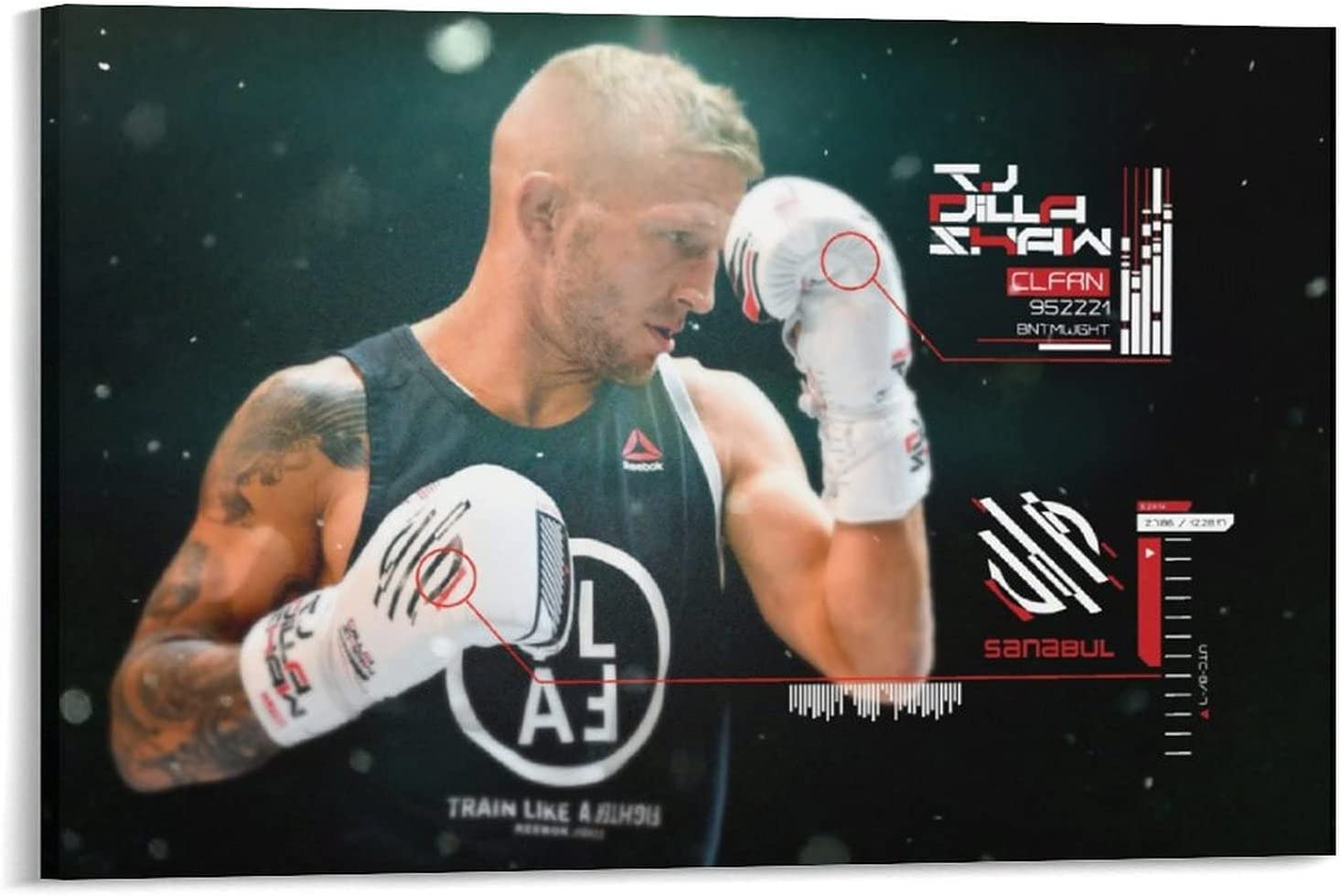 LEIMENG Complete Free Shipping Inexpensive Boxer T.J. Dillashaw Cool Wall Art Posters Canvas Poster