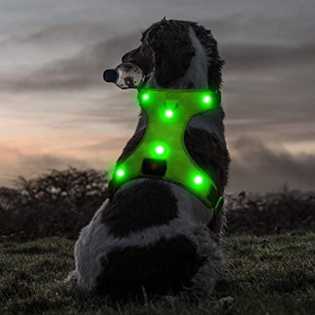 Ezier Glowing LED Dog Harness- USB Rechargeable No Pull Puppy Harness, Adjustable Soft Padded Pet Jacket, Mesh Reflective Dog Harness for Large Dogs(Large, Green)