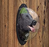 N&M Products Pet Window - Acrylic Dog Window/Peep Hole for Door or Gate