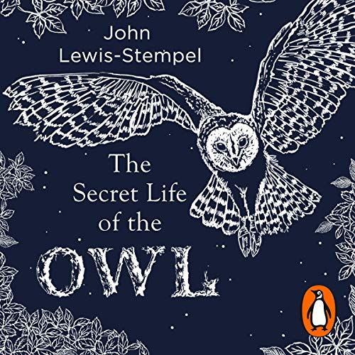 The Secret Life of the Owl audiobook cover art
