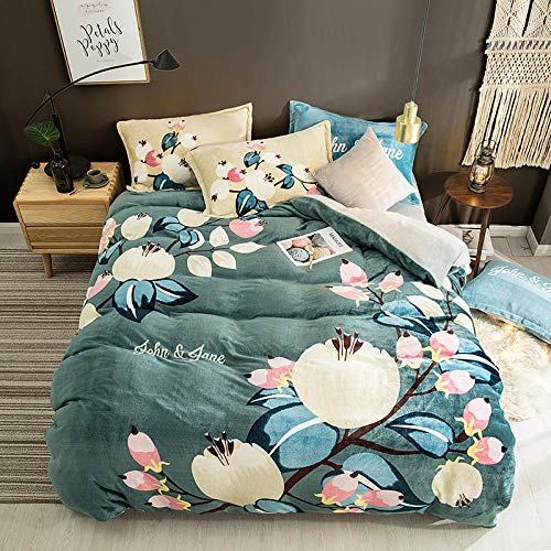 RESUXI Teddy Fleece beddengoed set, Winter dikke dubbelzijdige koraal fluweel cartoon fluweel vierdelig pak