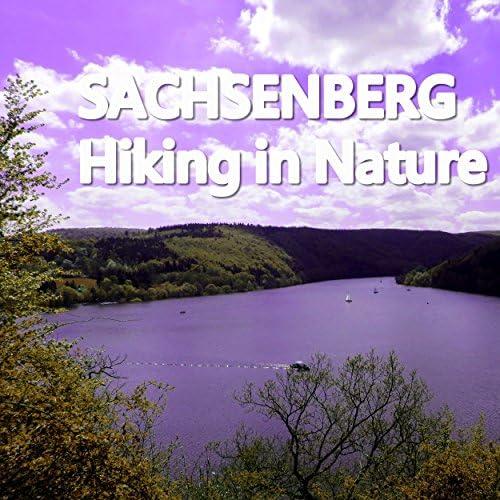 Sachsenberg