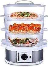 DYB Cuiseur Vapeur - Hot Pot électrique avec cuiseur Vapeur et Prise, cuiseur électrique Vert
