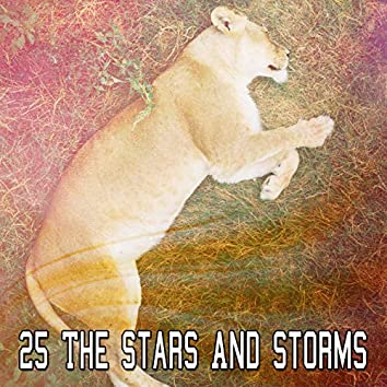 25 The Stars And Storms