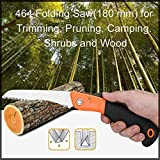 Folding Saw Review and Comparison