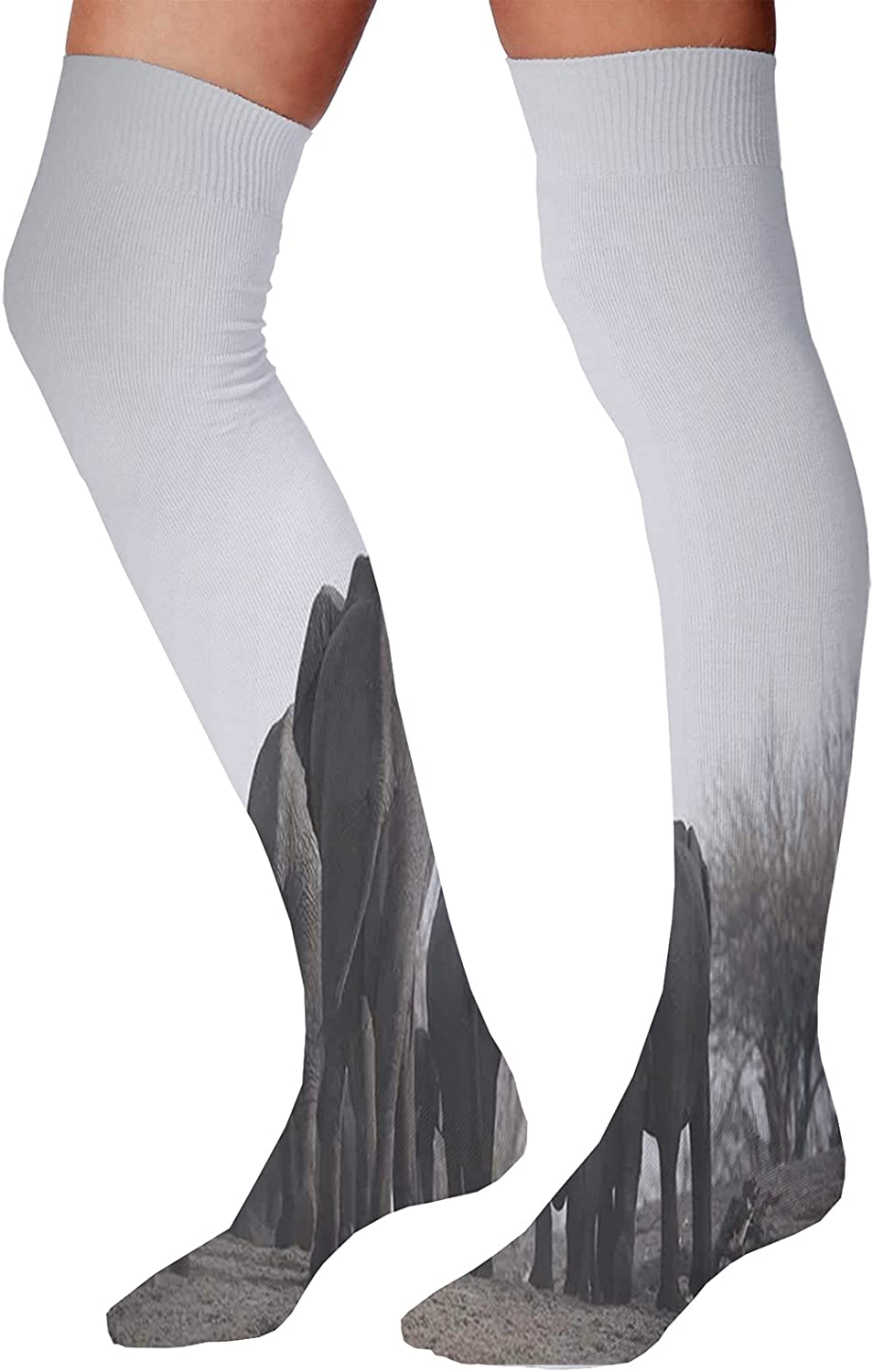 Men's and Women's Fun Socks,Image of Bamboo Trees in Rain Forest Far Eastern Wildlife Tropical Nature Inspired Style