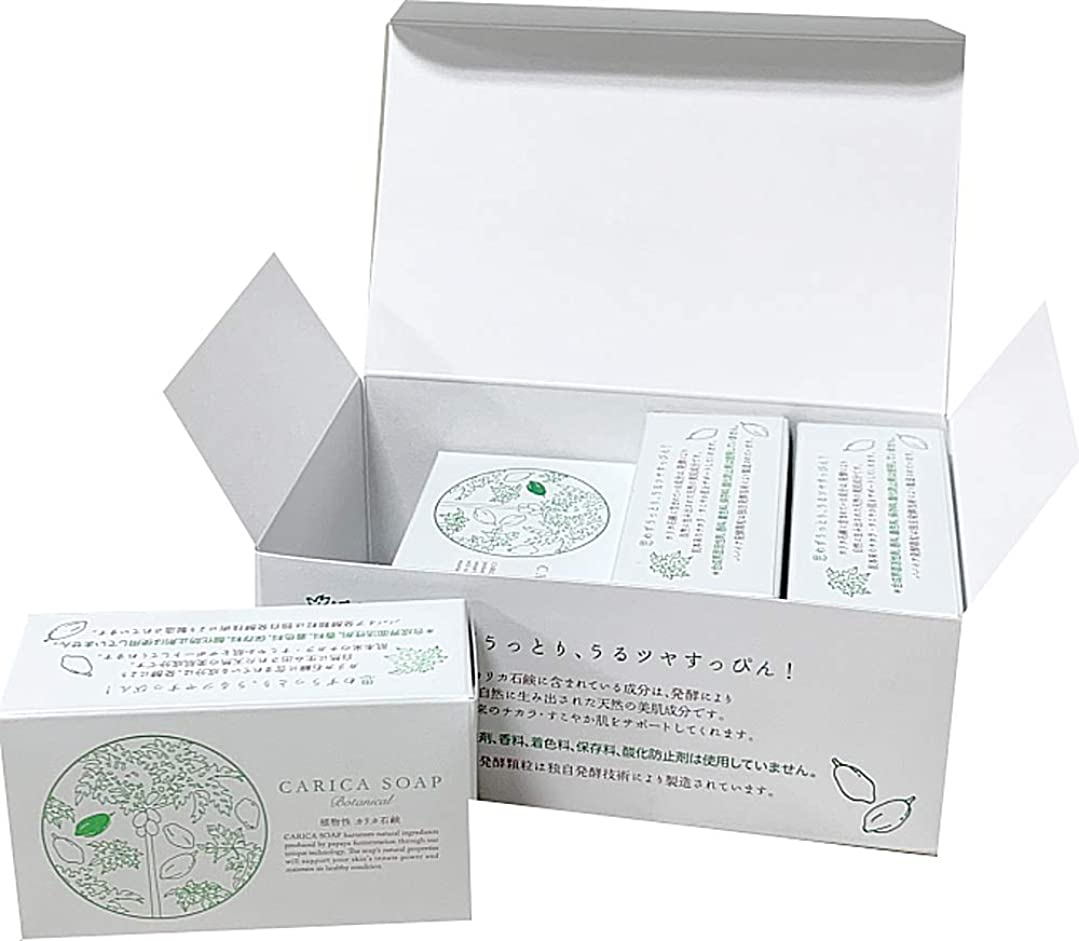 野な著者近代化する植物性カリカ石鹸100g お得な4個セット(箱入)