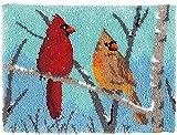 Pop Latch Hook Kit Cushion Cover DIY Latch Hook Rug Kits Kit de Ganchillo Alfombras para Adultos Alfombras de Crochet Bordados en Punto de Cruz con Pájaro rojo amarillo 52x38cm