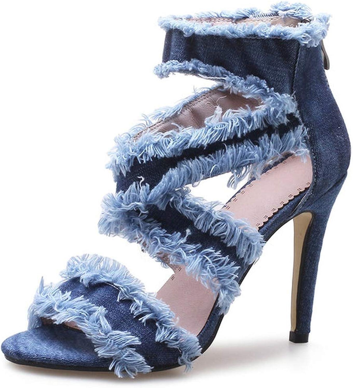 Women Sandals Women shoes Platform All MatchThin High Heel Denim Zippe,