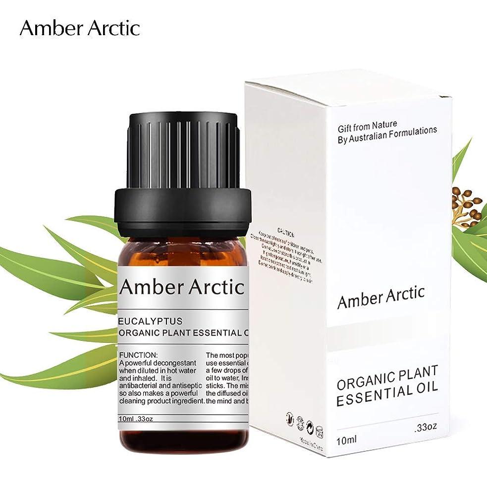 計画ビスケット浜辺Amber Arctic ユーカリ エッセンシャル オイル、 ディフューザー 用 100% 純粋 天然 アロマ ユーカリ オイル (10ミリリットル)