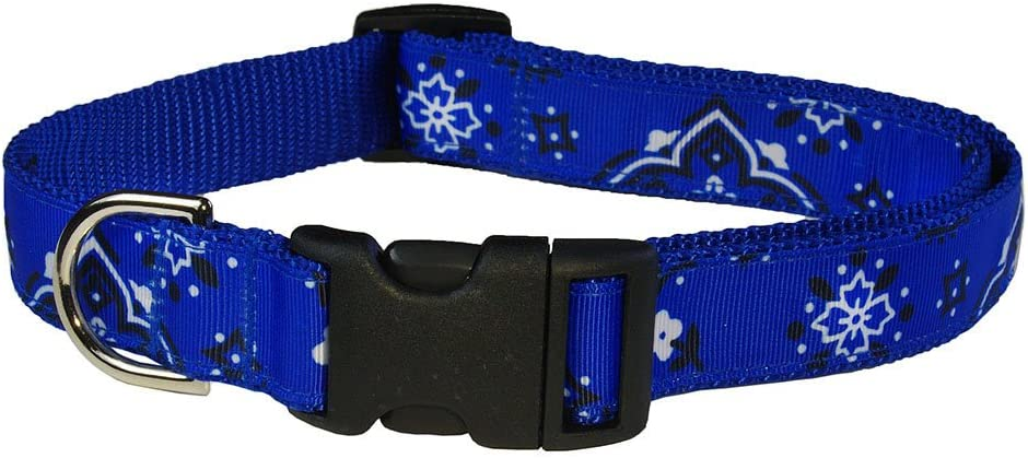 Special Spring new work one after another price for a limited time Sassy Dog Wear Adjustable Collar