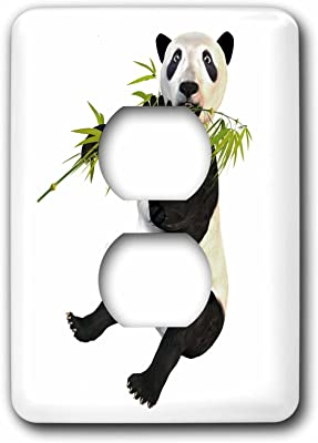 3dRose lsp/_212145/_6 Panda Bear Eating Bamboo 2 Plug Outlet Cover