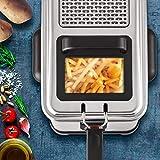 Seb Friteuse Semi-Professionnelle Filtra Pro 4L, Frites, Poulet, Capacité 1,3kg, Cuve Amovible, Thermostat Réglable, 2300 W, Inox FR518100