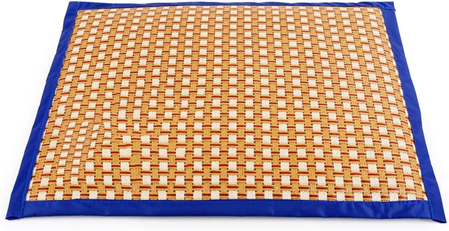 BLWXPet mat Mat Pet Mat Mat Doublesided Mat Cat And Dog Cool Mat Double Mat Pink bluee Pet mat (color   bluee, Size   XL)