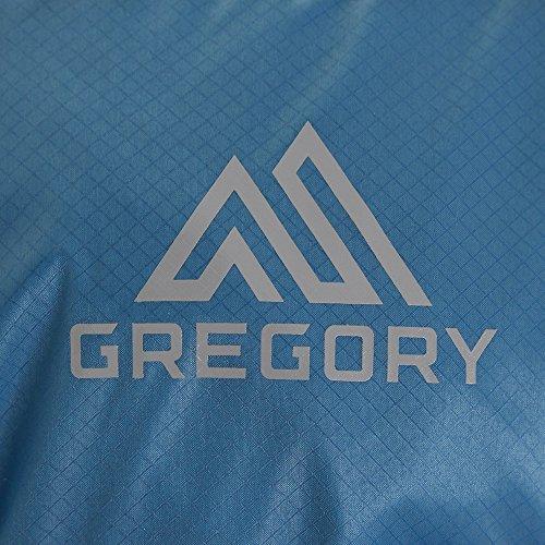 (グレゴリー)GregoryWomensRufous12Turquoise/Grey
