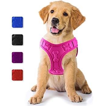 metric usa / Comfort Fit Pets Lightweight Step in Small and Medium Dog Harness Vest Easy to Put on & Take Off Soft Padded Interior & Exterior Puppy Harness Ensures Your Dog is Snug & Comfortable