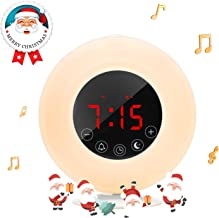 Wake-Up Light Sunrise Alarm Clock Radio with Sunrise Sunset Simulation,AM/FM,Dual Alarm,4.2 Bluetooth Speaker, 3 Natural Sounds, Snooze Function and Bedside Lamp