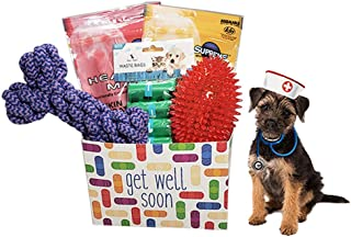 dog get well gift baskets
