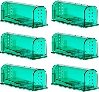 6 Pack Humane Mouse Traps Catch and Release Pet and Child Safe No Poison Green Color
