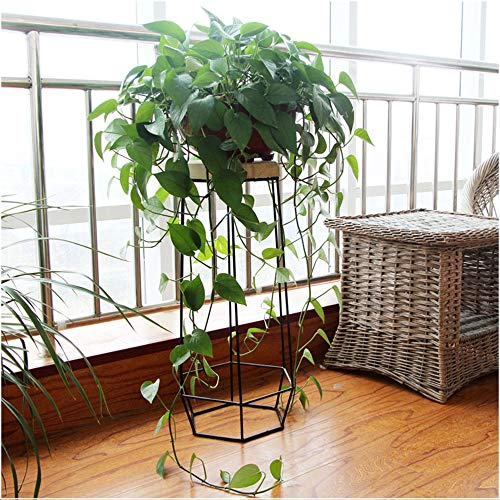 YINUO Européenne en fer forgé multi-couche étagère à fleurs étage créatif salon balcon intérieur vert Rose suspendu orchidée pot de fleur rack noir (Size : 24x69cm)