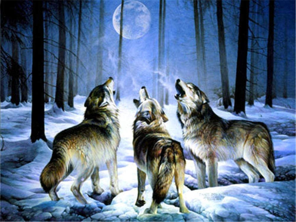 XUEKELIN Paint 5 ☆ popular by Manufacturer OFFicial shop Numbersthree Oil Wolves Seni Painting