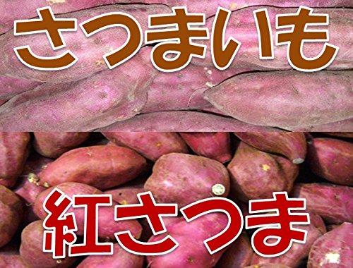 新芋(2021年産) 訳あり 鹿児島県産 紅さつま S〜Lサイズ混合 1箱:約10kg入り  さつまいも