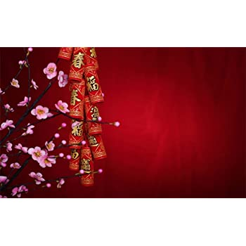 Lantern 10x15 FT Photo Backdrops,Abstract New Year Festivities Handmade Cultures China Floral Background Background for Baby Birthday Party Wedding Vinyl Studio Props Photography Fuchsia