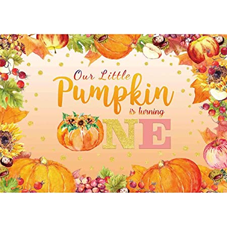 Wrinkle Free Fabric Backdrop Fall Poly Paper Backdrop Pumpkin Harvest Photography Printed Backdrop Newborn Photography Backdrop