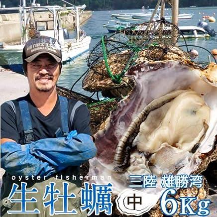 生牡蠣 殻付き 6kg 中 生食用 宮城県産 漁師直送 格安生牡蠣お取り寄せ