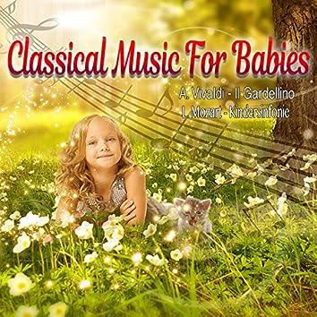 Classical Music for Babies, Vivaldi: Il Gardellino - Mozart: Kindersinfonie (Live Recording)