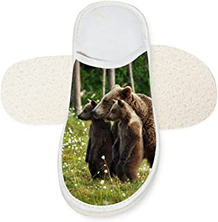 Aslgisy Indoor Shoes,Creative Standing Focused Black Bear Family Car Auto Motor Racing Print Slippers for House/Home