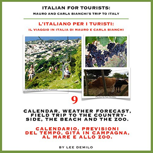 Italian for Tourists Ninth Lesson: Calendar, Weather Forecasting and Field Trips  audiobook cover art