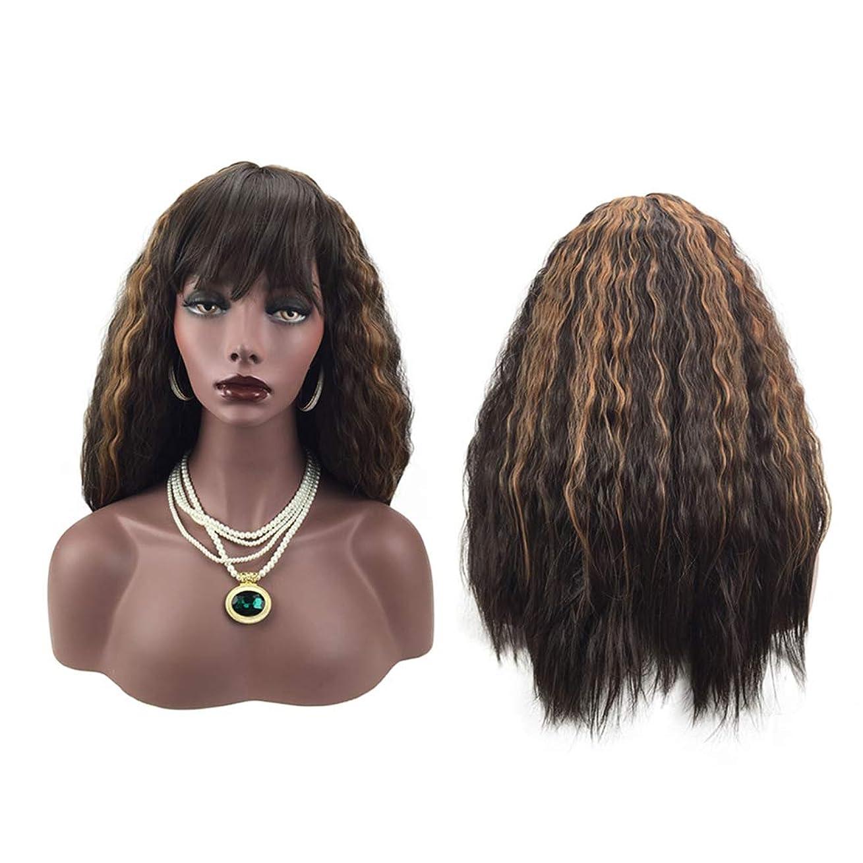 カーテンペンス市区町村女性のファッションの長い巻き毛のかつら自然な探している絶妙な弾性ネットかつらカバー(66191)