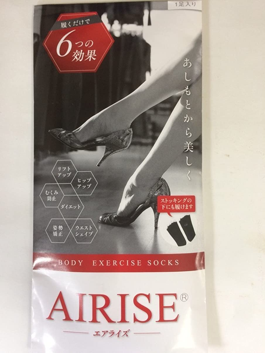 世論調査テラス技術者AIRISE(エアライズ) BODY EXERCISE SOCKS (ベージュ)