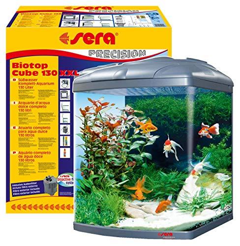 sera Biotop Cube 130 XXL ein 130l Süßwasser Aquarium Komplettset - Plug & Play - mit PL-T5  Beleuchtung 2x 24 Watt, Regelheizer und Außenfilter, gebogenes Glas, Maße (B x H x T) 51 x 66,5 x 58 cm