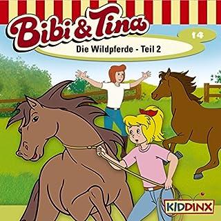 Die Wildpferde 2 audiobook cover art
