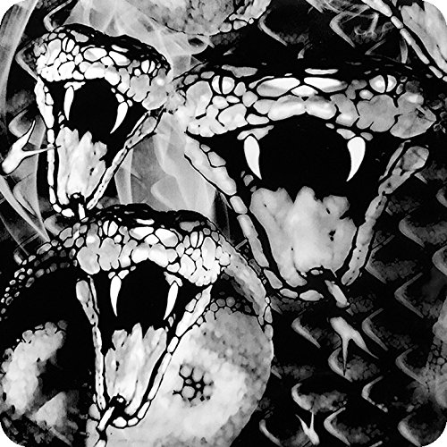 Hydrographischer Film Wassertransferdruck ACTIVATOR - Schlangen - Skull and Flames HLC-050 (2)
