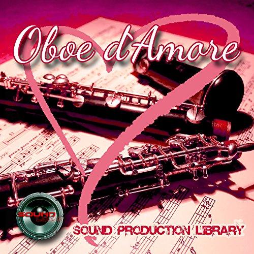 Sale!! Oboe d`Amore - Large original 24bit WAVE/Kontakt Samples/Loops Library