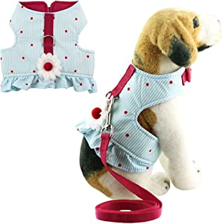 Bolbove Soft Pet Lovely Daisy Stripes Vest Harness and Leash Set for Cats Small Dogs Blue