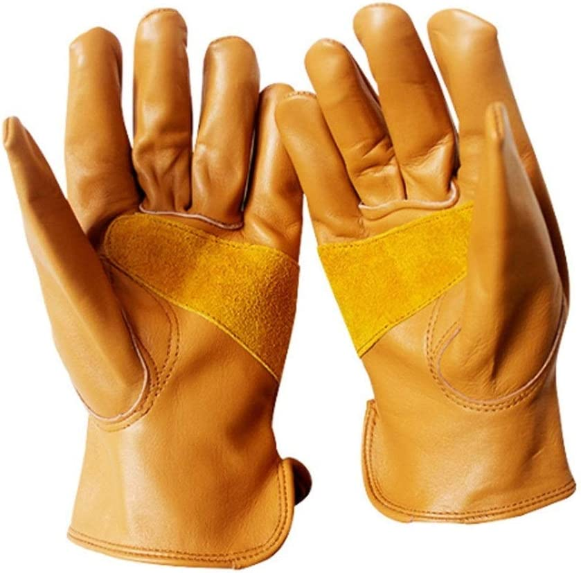Liyuzhu Premium Leather Driver Gloves Elastic Limited price sale Gold Large wholesale 1p Back