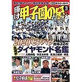 輝け甲子園の星 2020年 03 月号 [雑誌]